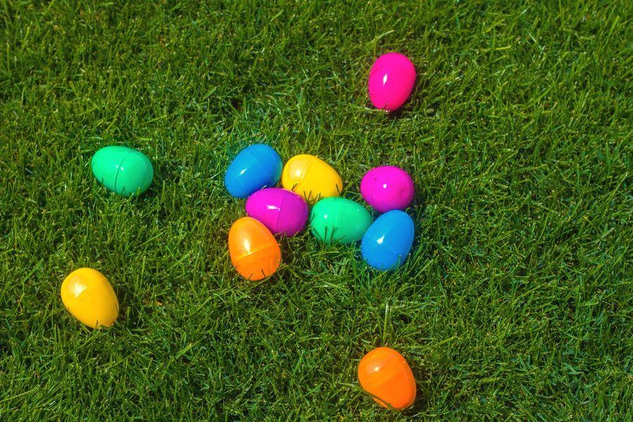 Chasse aux œufs dans Hyères à Hyères - 0