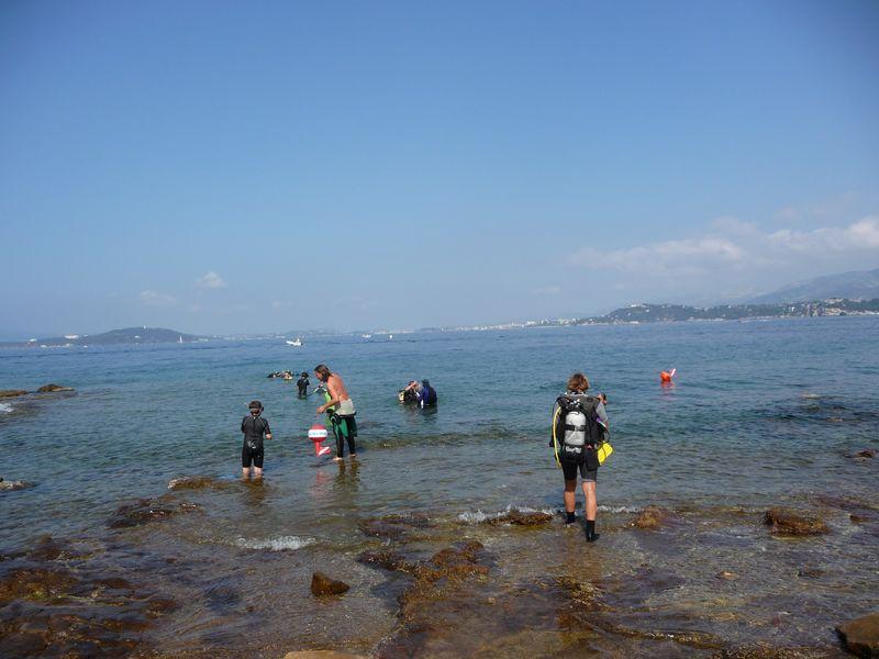 Balade aquatique : A la découverte de la faune et la flore marine à Le Pradet - 4