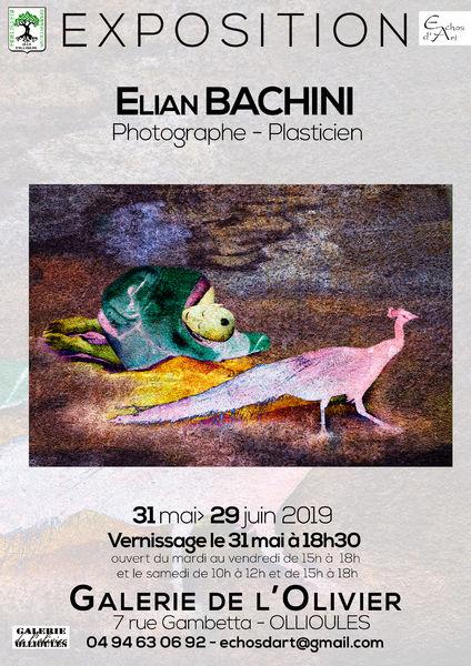Exposition «Incrustations» de Elian Bachini, photographe plasticien à Ollioules - 0