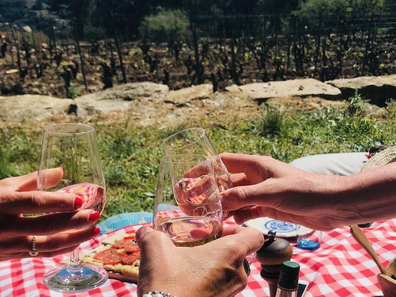 Pique nique dans les vignes à Ollioules - 0