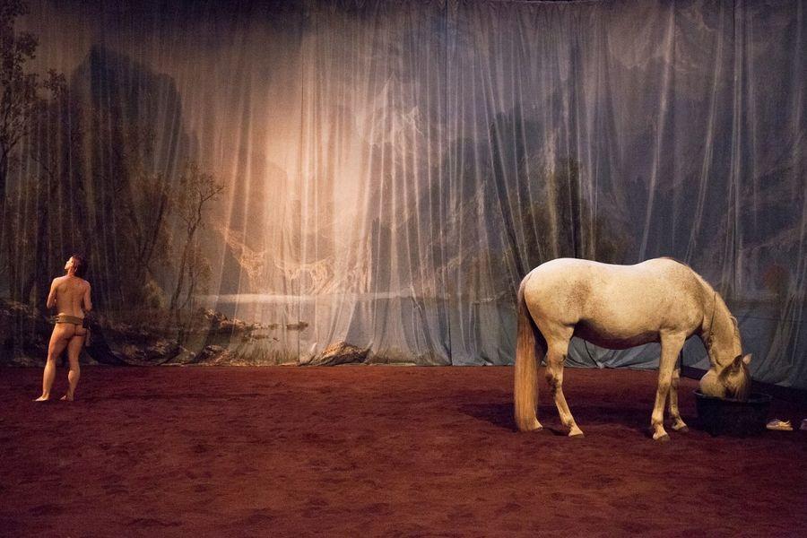Théâtre «Hate – Tentative de duo avec un cheval» à Ollioules - 3
