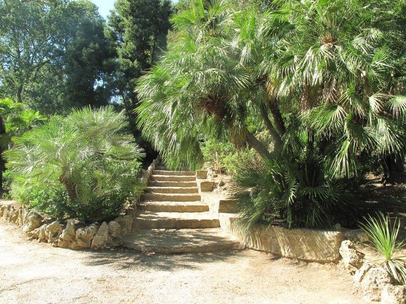 Petits contes au jardin (visite guidée spécial enfants) à Hyères - 5