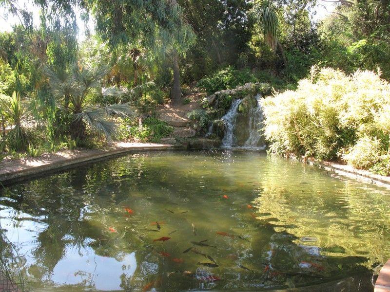 Petits contes au jardin (visite guidée spécial enfants) à Hyères - 6
