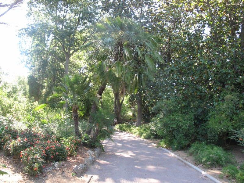 Petits contes au jardin (visite guidée spécial enfants) à Hyères - 10