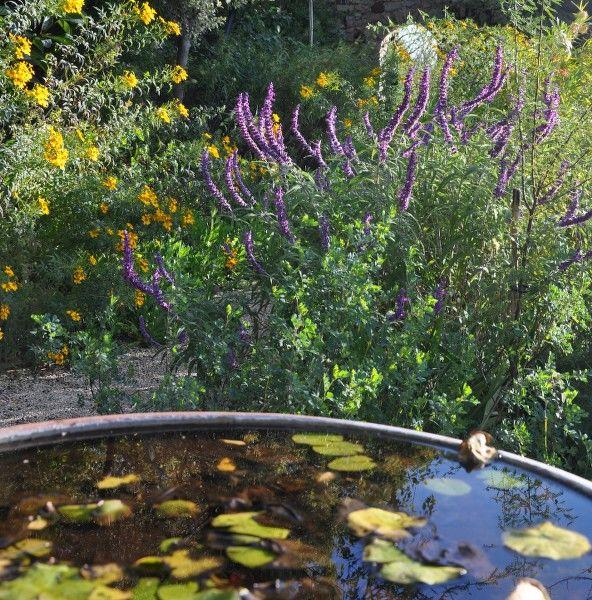 Petits contes au jardin (visite guidée spécial enfants) à Hyères - 12