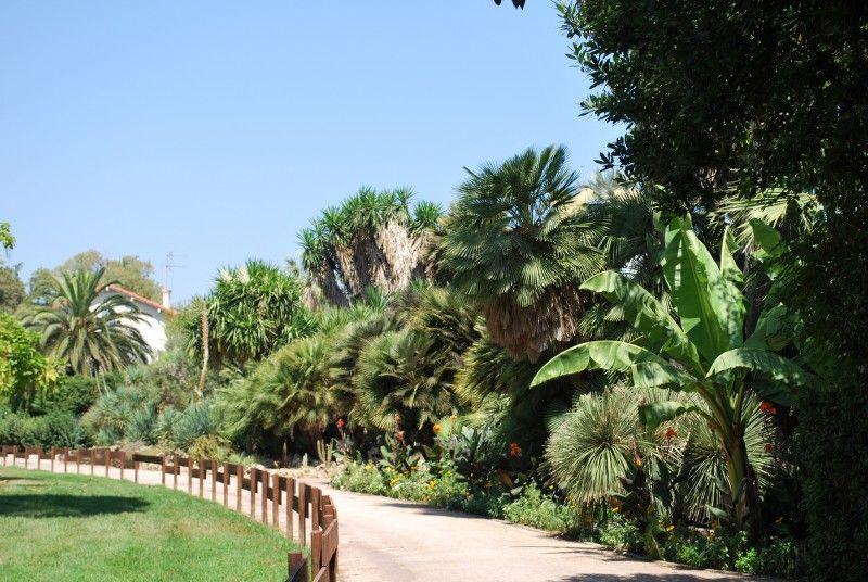 Petits contes au jardin (visite guidée spécial enfants) à Hyères - 17