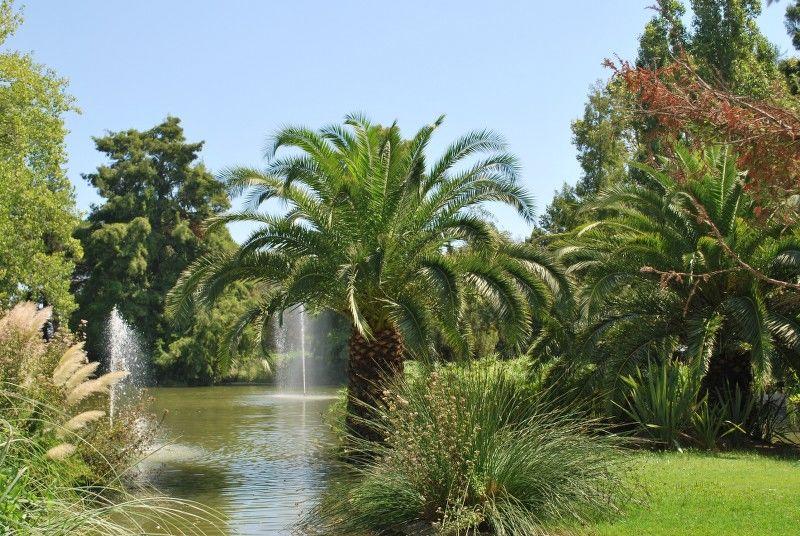 Petits contes au jardin (visite guidée spécial enfants) à Hyères - 18