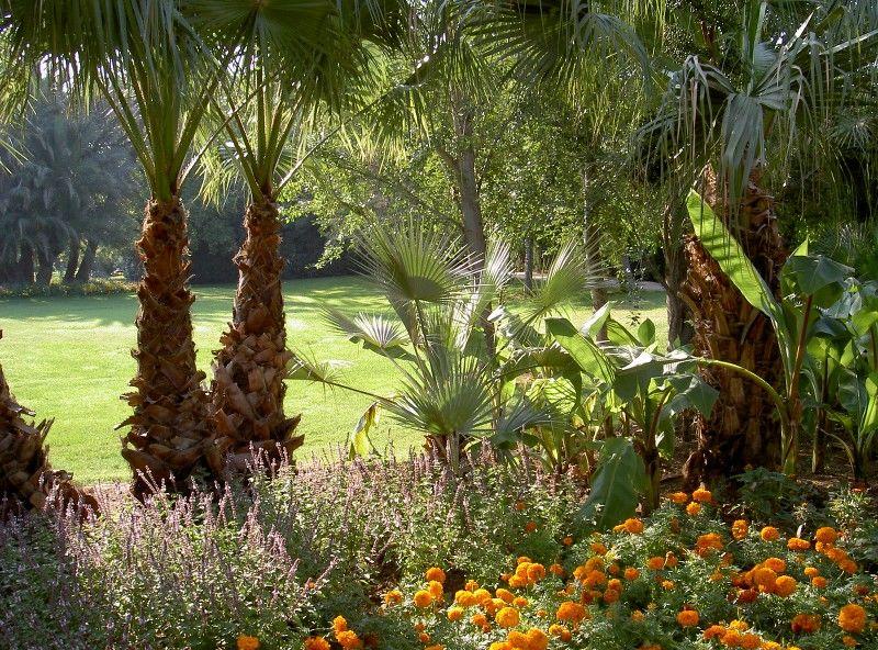 Petits contes au jardin (visite guidée spécial enfants) à Hyères - 20