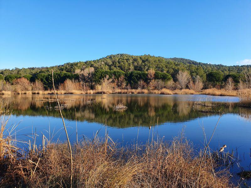 Sorties nature aux étangs de Sauvebonne à Hyères - 0