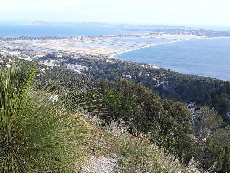Randonnée Belvédère de la Californie de Carqueiranne à Carqueiranne - 0