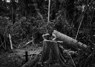 10 ans de photojournalisme – Exposition à la Villa Carmignac à Hyères - 6