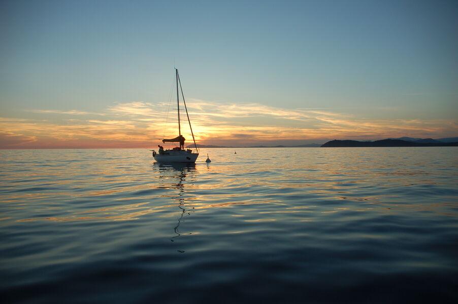 Sortie en mer: Baignade à Porquerolles à Hyères - 2