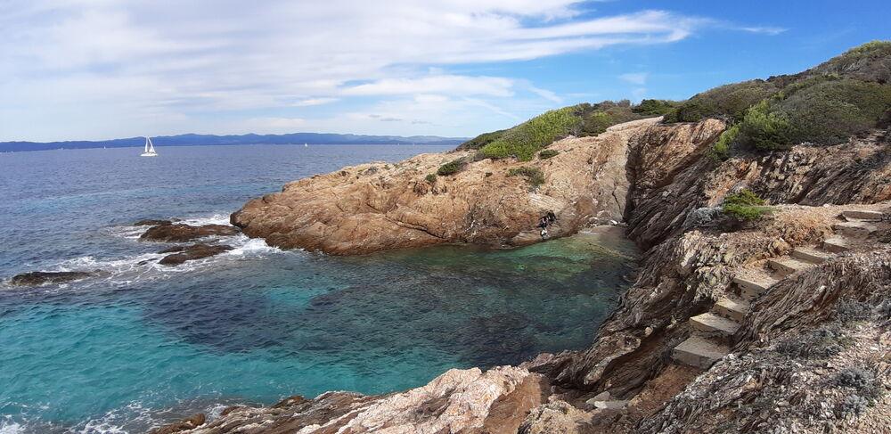 Point rencontre : Balade naturaliste à la rencontre de la faune et de la flore de l'île de Porquerolles à Hyères - 0