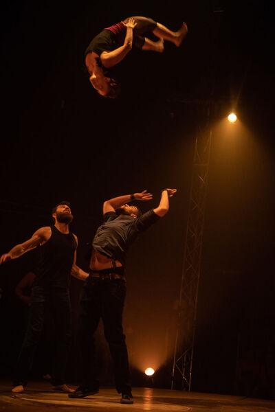 Cirque «Born to be circus» par le Circo Zoé à La Seyne-sur-Mer - 1