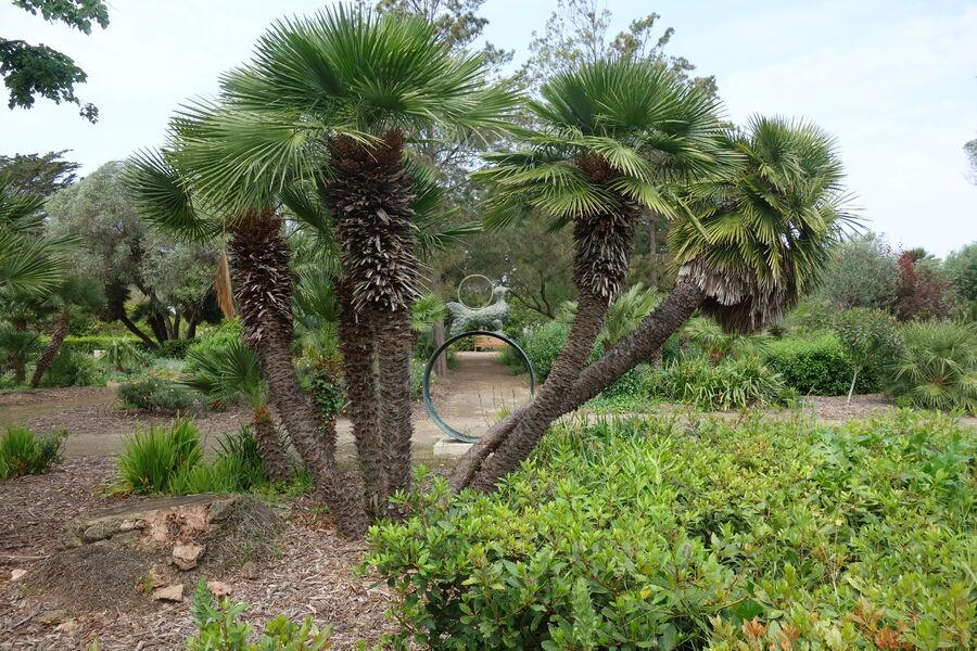Jardin Emmanuel Lopez à Hyères - 8