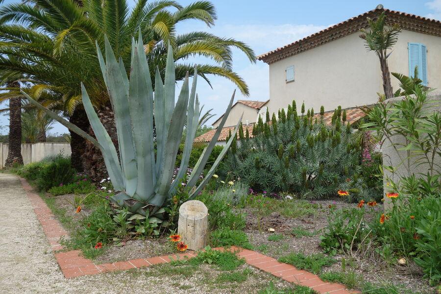 Jardin Emmanuel Lopez à Hyères - 9