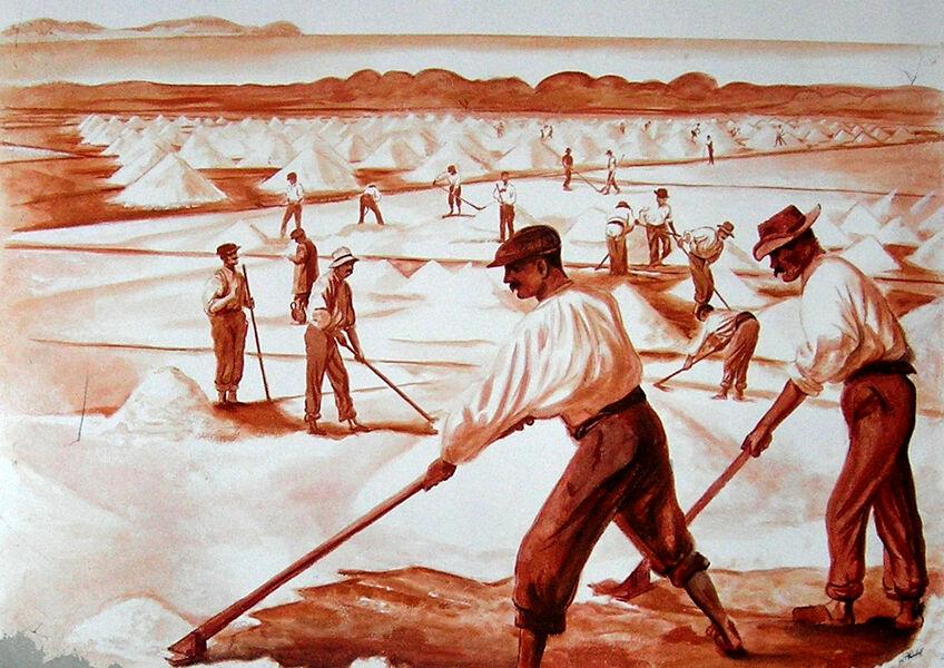 JEP: Histoire du sel (visite guidée) à Hyères - 4