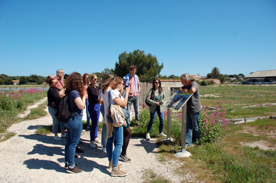 JEP: Histoire du sel (visite guidée) à Hyères - 8