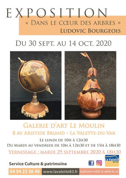 Exposition – Dans le cœur des arbres – Ludovic Bourgeois à La Valette-du-Var - 0