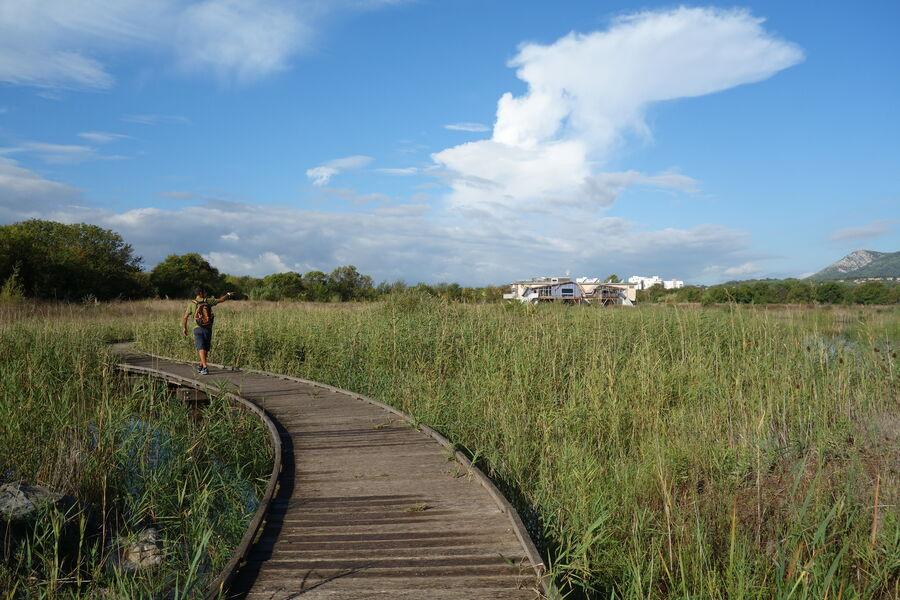 Visites découverte de l'Espace Nature: Focus sur les oiseaux à La Garde - 7