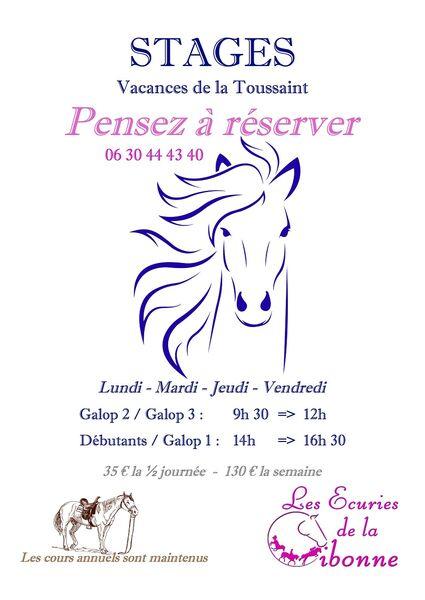 Stage d'équitation aux écuries de la Cibonne à Le Pradet - 0