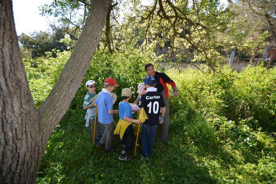 Les petits explorateurs du maquis (visite guidée spécial enfants) à Hyères - 2