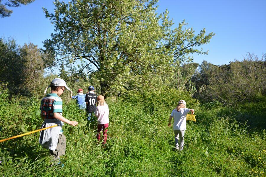 Les petits explorateurs du maquis (visite guidée spécial enfants) à Hyères - 5
