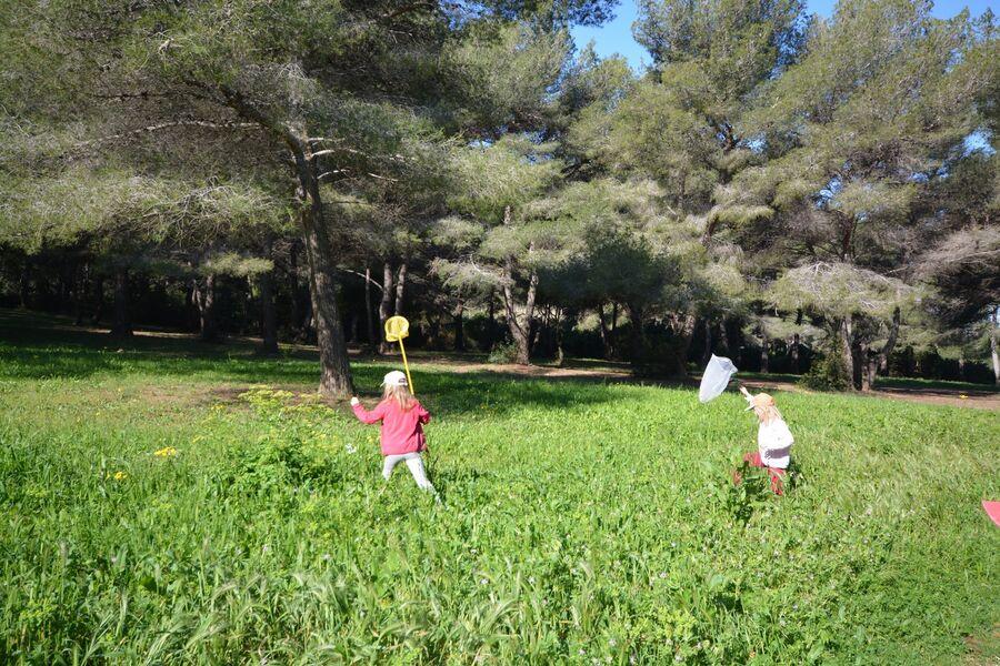 Les petits explorateurs du maquis (visite guidée spécial enfants) à Hyères - 9