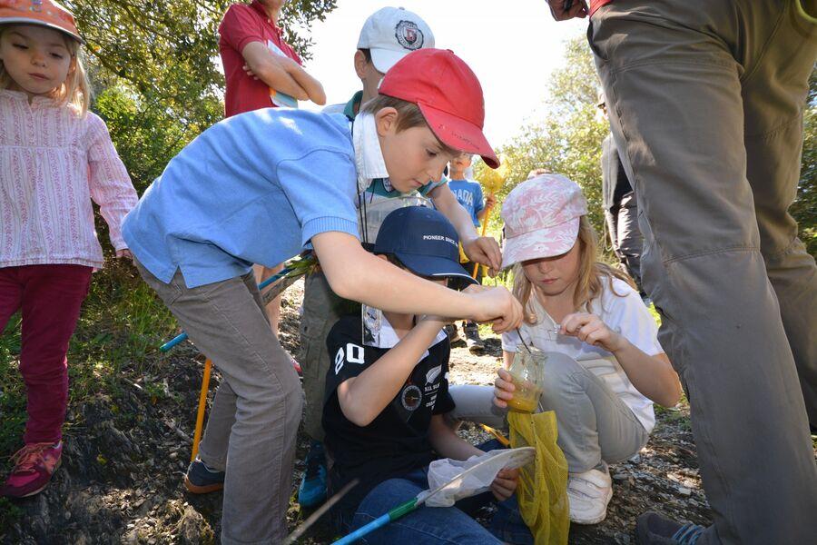 Les petits explorateurs du maquis (visite guidée spécial enfants) à Hyères - 12