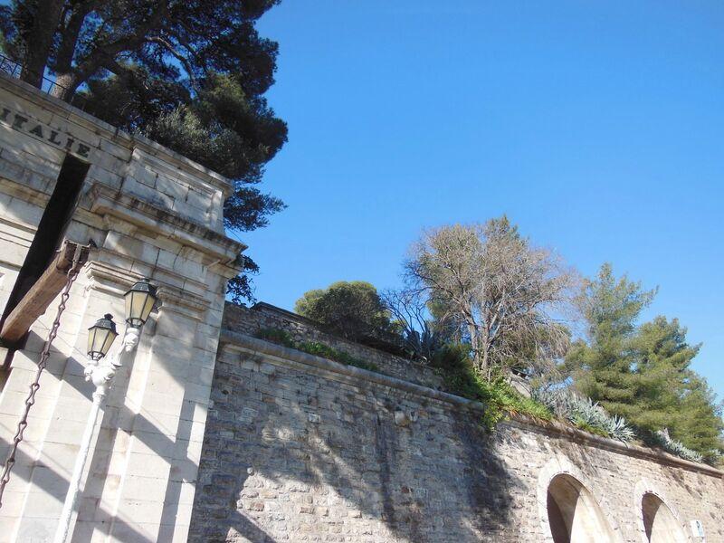 La nature dans la ville – Visite commentée à Toulon - 4
