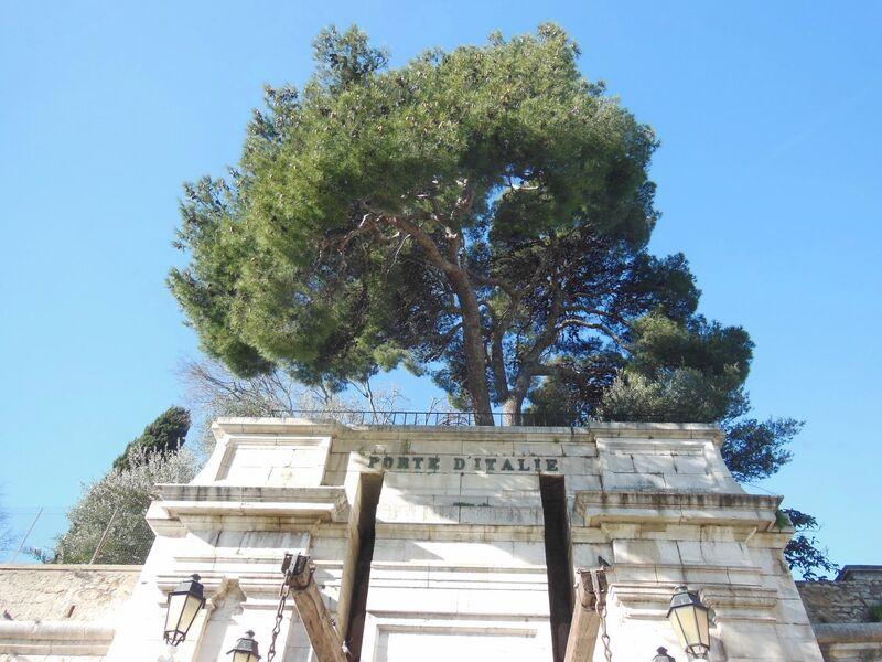 La nature dans la ville – Visite commentée à Toulon - 1