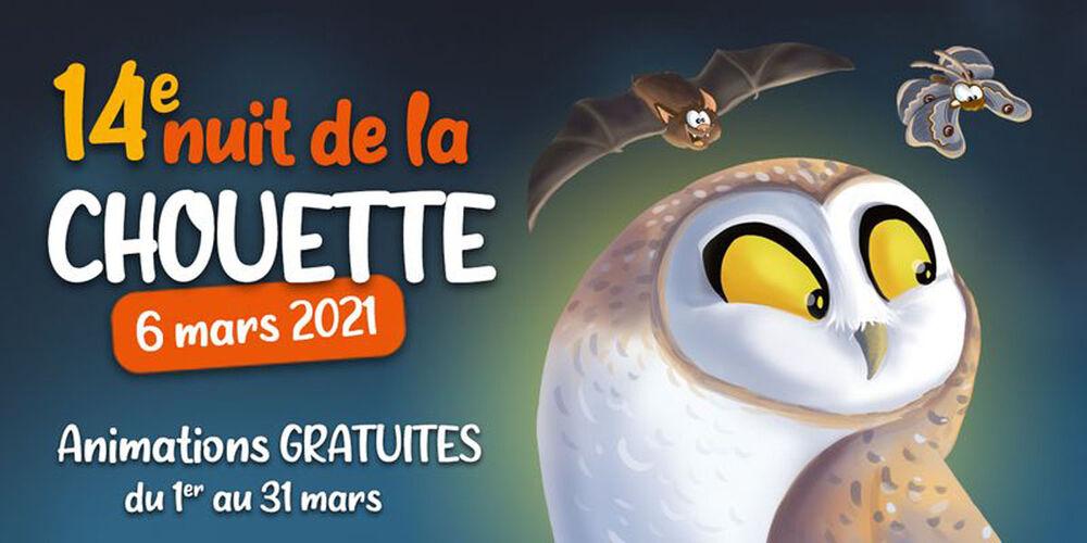 Webinaire «A la découverte des rapaces nocturnes de France métropolitaine» à La Seyne-sur-Mer - 0