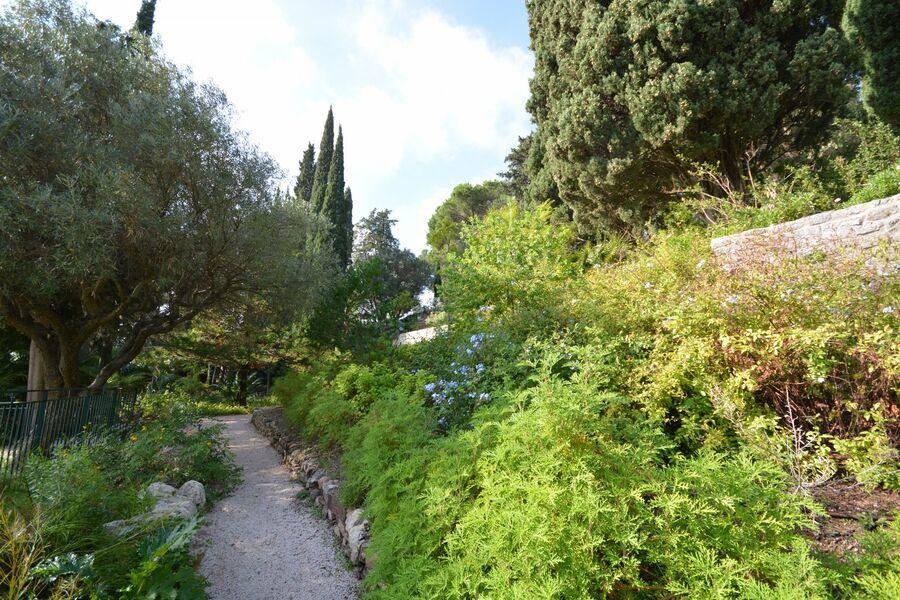 Tous les jardins du monde – Balade nature à Hyères - 3