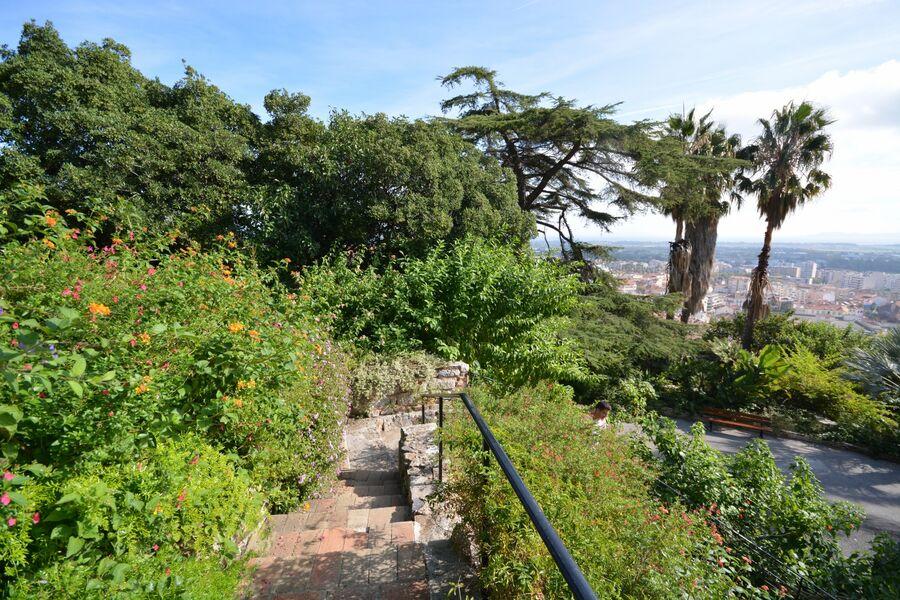 Tous les jardins du monde – Balade nature à Hyères - 4