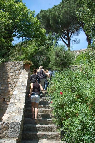 Tous les jardins du monde – Balade nature à Hyères - 0