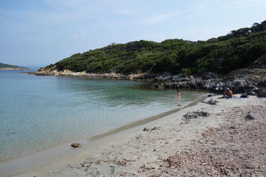 Balade nature accompagnée à Port-Cros avec Vincent Blondel à Hyères - 3