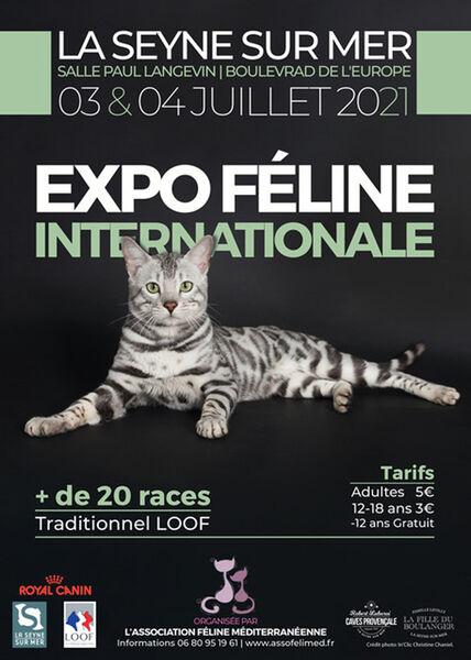 2è exposition féline internationale à La Seyne-sur-Mer - 0