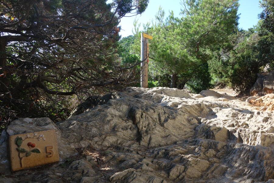 Port Cros, perle des îles d'or à Hyères - 5