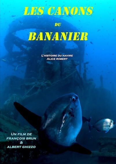 Ecran nature à Porquerolles – Les canons du Bananier (F.Brun et A.Ghizzo) à Hyères - 0