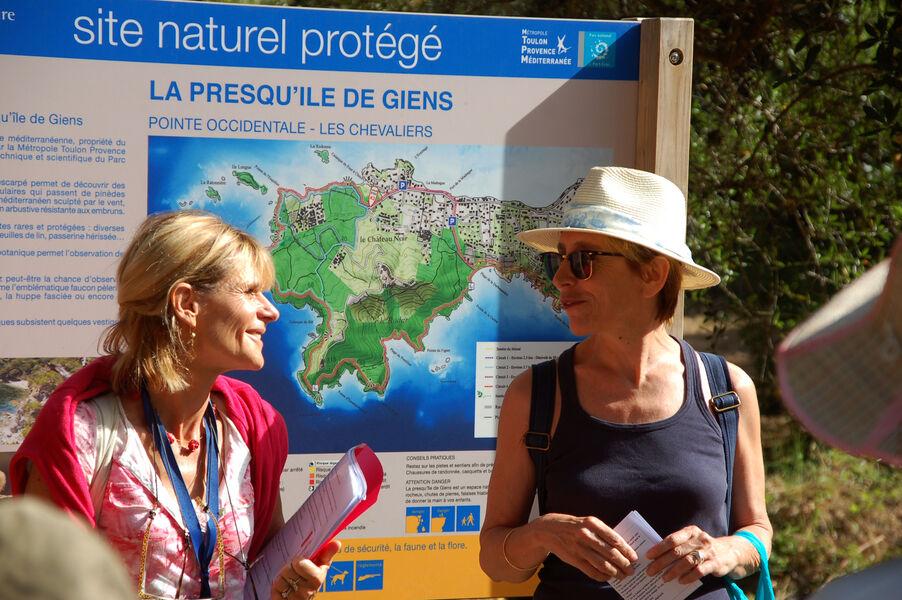 Prendre un bain de forêt sur la presqu'île de Giens à Hyères - 2