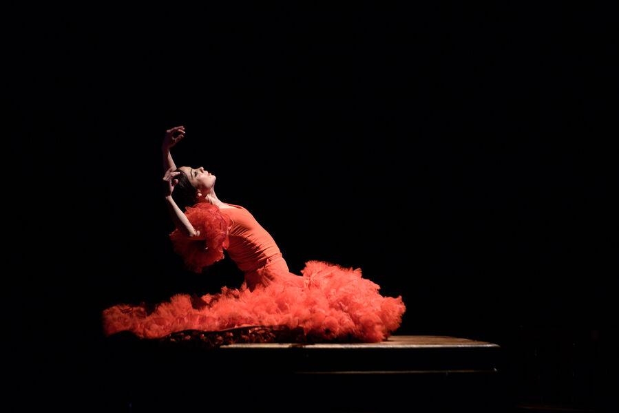 Musique: «La Espina que quiso ser flor o la Flor que soñó con ser bailaora» d'Olga Pericet à Ollioules - 0
