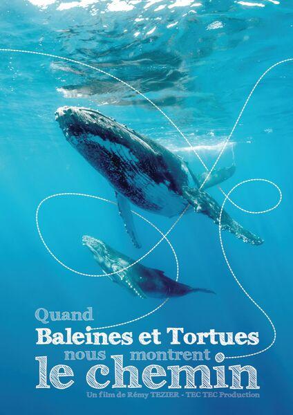 Ecran nature au Pradet – Quand baleines et tortues nous montrent le chemin (R.Tézier) à Le Pradet - 0